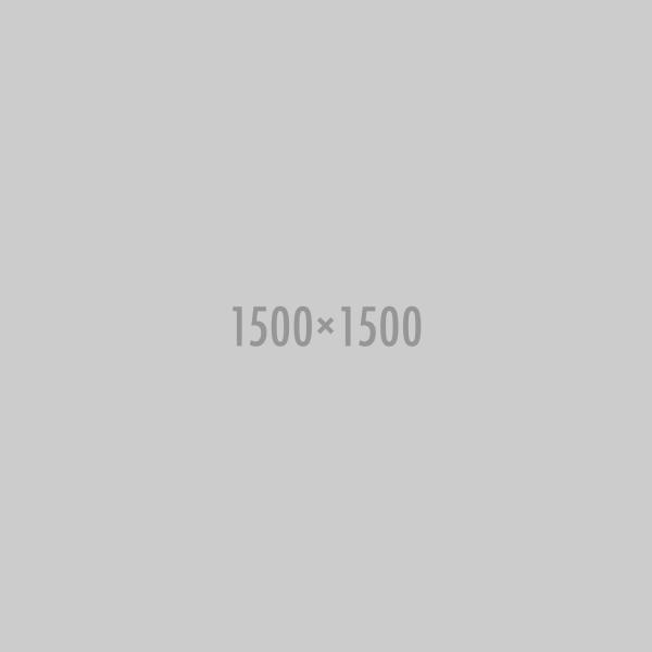 1500x1500
